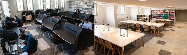 Bibliothèque du Palais - Salle d'étude