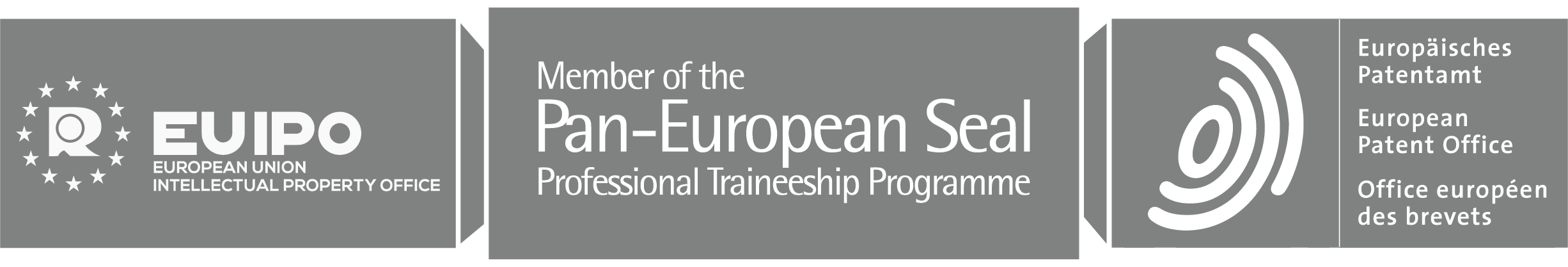 Logo programme paneuropean